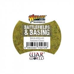 Battlefield and Basing Autumn Grass