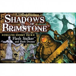 Shadows of Brimstone Flesh Stalker and Flesh Drones