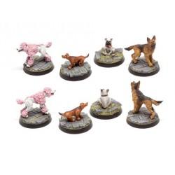Hunde Set 3