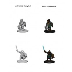 D&D Nolzurs Marvelous Miniatures Dwarf Female Paladin