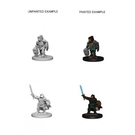 D&D Nolzurs Marvelous Miniatures Dwarf Female Paladin