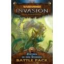 Warhammer Invasion: Zeichen in den Sternen Morrslieb-Zyklus