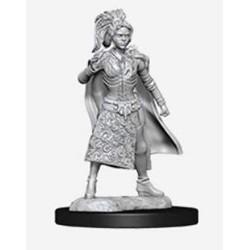 D&D Nolzurs Marvelous Miniatures Female Human Sorcerer