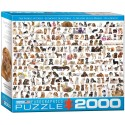Puzzle The World of Dogs 2000T 8220-0581