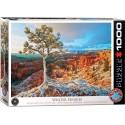 Puzzle Winter Sunrise 1000T 6000-0692