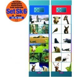 Flocards Set SK6: Allg. Verständnis
