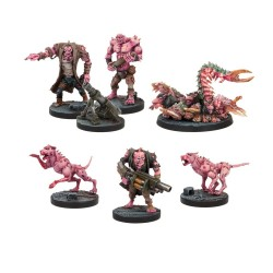 Deadzone Plague Support Booster